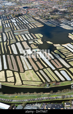 Netherlands, Broek op Langedijk, Area called Oosterdel. Marshland changed into agricultural land. Aerial - Stock Photo