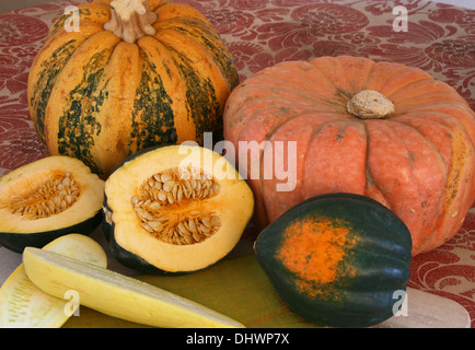 Closeup of group of pumpkins and squash on a table - Stock Photo