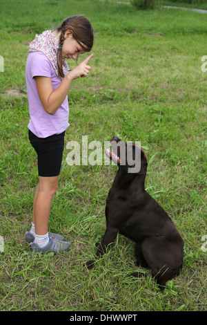 Little girl trains a dog on a meadow - Stock Photo