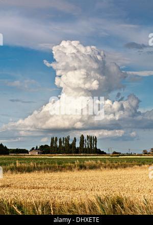 Towering cumulonimbus cloud formation. - Stock Photo