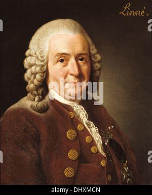 Carl Linnaeus (  Carl von Linné ) - by Alexander Roslin, 1775 - Stock Photo