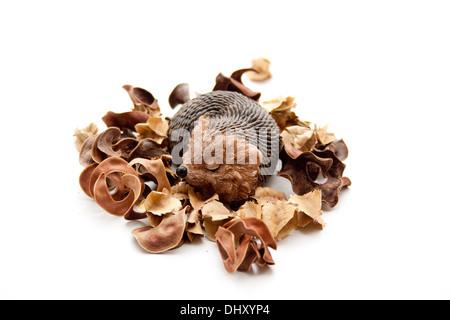 Hedgehog figure with potpourri - Stock Photo