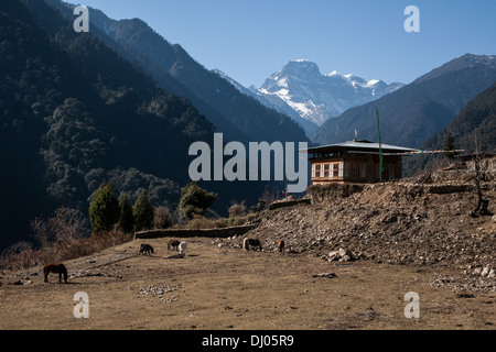 A traditional house perched amongst the Bhutanese Himalayas - Stock Photo