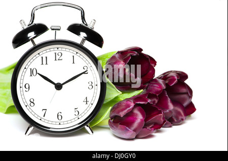 Spring time. Old fashion alarm clock with violet tulips - Stock Photo