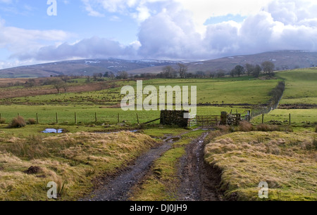 Muddy farm track and wet windswept fields, farmland on the northern edge of the Caldbeck fells, winter, Cumbria - Stock Photo