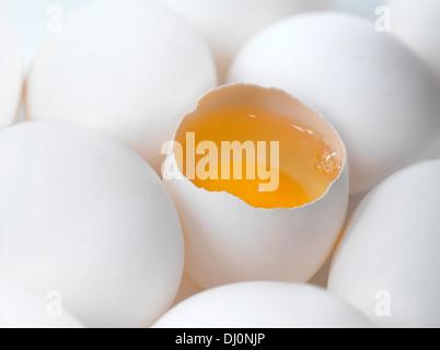 white chicken eggs, one open egg showing yolk - Stock Photo