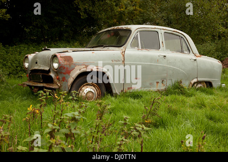 Abandoned Old Austin A50 car left to rust in a country field in the Forest of Dean area - Stock Photo