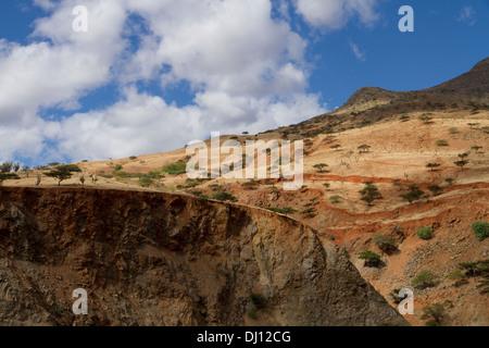 Semi-arid vegetation in the Huancabamba Depression, Cajamara, Peru - Stock Photo