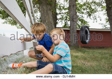 Young boys exploring tree bark in back yard - Stock Photo