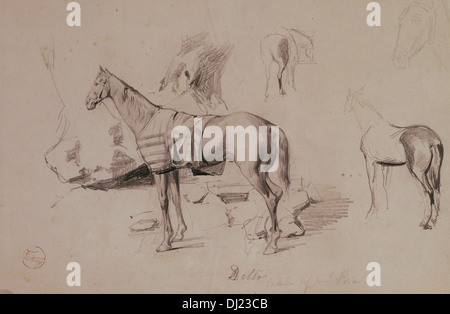 Mariano Fortuny (1838-1874). Spanish painter and printmaker. Dello, horse of General Prim. Drawing in Africa, 1860. - Stock Photo
