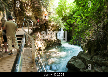 Hermon Stream Nature reserve (Banias) Golan Heights Israel This stream is one of the sources of the Jordan River - Stock Photo