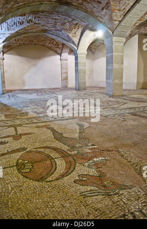 San Colombano church (mosaics in the crypt),  Bobbio, Emilia Romagna, Italy - Stock Photo