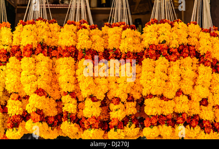 Marigold Flowers garlands for sale at Mapusa Market, Goa, India - Stock Photo