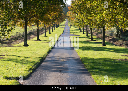 The road leading to Batsford Arboretum near Moreton in Marsh, The Cotswolds UK - Stock Photo