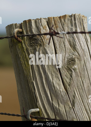 Closeup of wooden fence post a rusty barbed wire. - Stock Photo