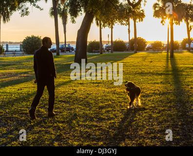 Man walking his dog at sunset in White Point Garden, Charleston, South Carolina, USA - Stock Photo
