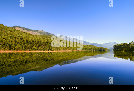 Munnar, Kerala, India. Woodland and reflections in a natural lake and Kannan Devan Hills in the background on a - Stock Photo