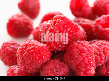 Pile of raspberries close up - Stock Photo