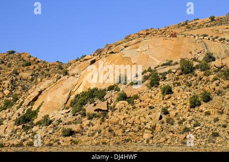 monolithic Granite dome, Goegap, South Africa - Stock Photo