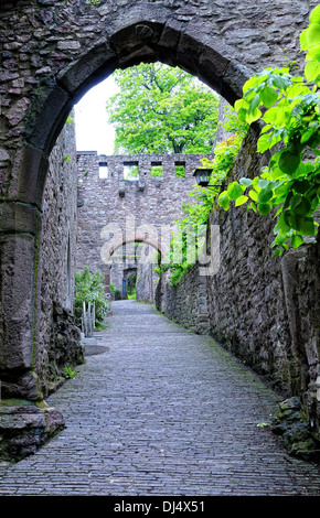 Passage to the castle