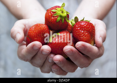 a handful of fresh strawberries - Stock Photo