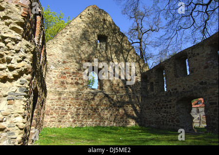 Ruins of a monastry - Stock Photo