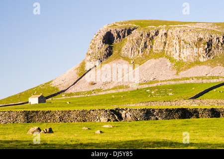 Robin Proctors Scar, a limestone cliff between Clapham and Austwick in the Yorkshire, Dales, UK. - Stock Photo