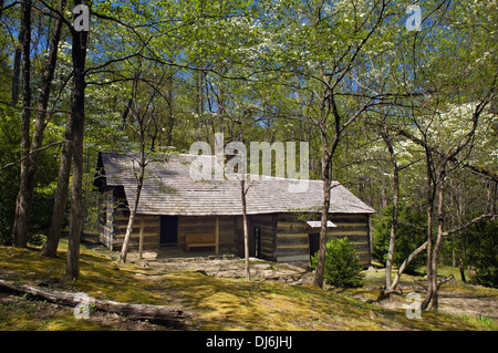 Smoky Mountains Hiking Club Cabin on the Porter's Creek Trail in the Great Smoky Mountains National Park in Tennessee - Stock Photo