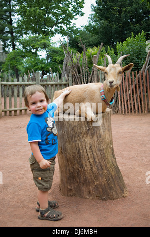 Young Boy Petting A Goat In The Petting Zoo In Beacon Hill Park Stock Photo 16097162 Alamy