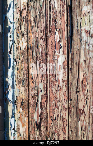 Flaking and fading paint on wooden door - Stock Photo