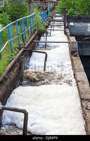 Dirty sewage water discharged into the canal - Stock Photo