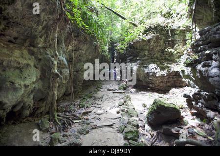 Way through Limestone caves, Baratang island, Andaman Islands, India - Stock Photo