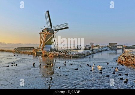 Drainage mill ''Hope springs eternal'' in  typically Dutch flat landscape in winter, Voorhout, South Holland, The - Stock Photo