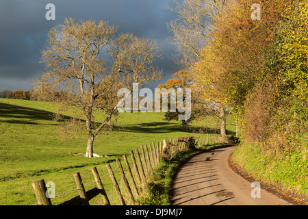 NARROW COUNTRY LANE IN AUTUMN WITH AUTUMN COLOUR AND DRAMATIC DARK SKY UK - Stock Photo