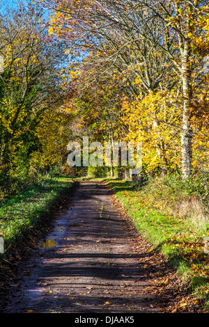 A narrow country track or lane in late autumn. - Stock Photo