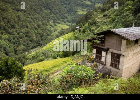 Bhutan, Wangdue Phodrang, small farmhouses amongst steeply sloping terraced fields - Stock Photo