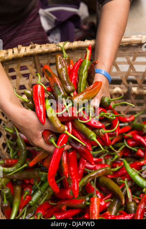 Bhutan, Nobding, woman's hands holding hot red and green chillies in market - Stock Photo