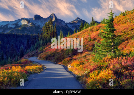 Fall color and sunrise with path in Mt. Rainier National Park with view of Tatoosh Mountains. Washington - Stock Photo