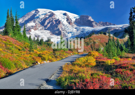 Fall color and sunrise with path in Mt. Rainier National Park . Washington - Stock Photo