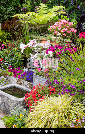 Small garden feature including variety of plants shapes types and features - Stock Photo
