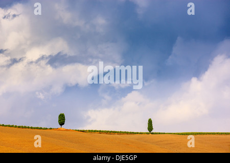 The Crete Senesi refers to an area of the Italian region of Tuscany to the south of Siena - Stock Photo