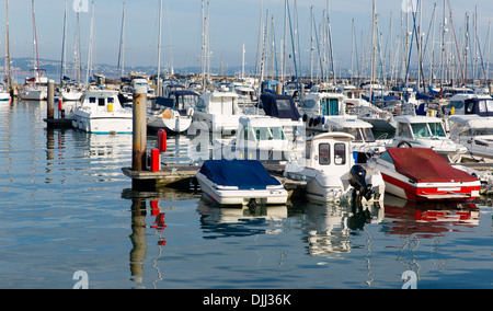 Motor boats with blue and red in a marina with masts and calm sea - Stock Photo