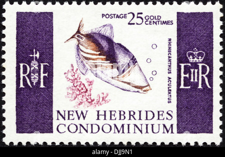 postage stamp New Hebrides Condominium 25c featuring Rhinecanthus Aculeatus issued 1966 - Stock Photo