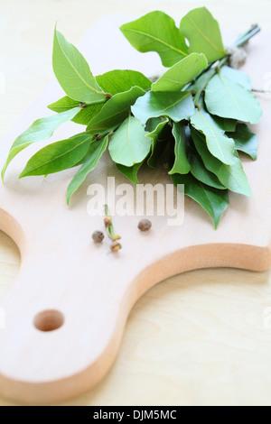 bay leaf on cutting board, food closeup - Stock Photo