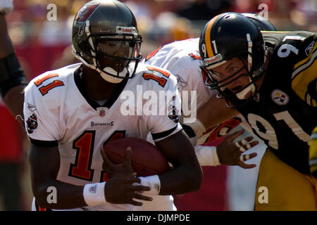 Sep. 26, 2010 - Tampa, Florida, United States of America -  Tampa Bay Buccaneers quarterback Josh Johnson (11) with - Stock Photo