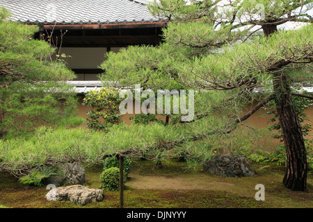Japan, Kyoto, Daitokuji Temple, garden, - Stock Photo