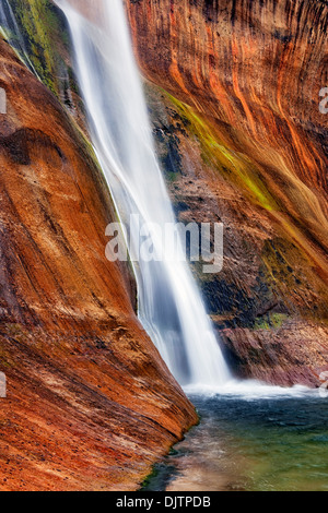 Lower Calf Creek Falls pours over the brilliant colored walls of Navajo sandstone in Utah's Escalante National Monument. - Stock Photo