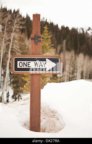 'One Way' direction arrow sign on post in snowy woods