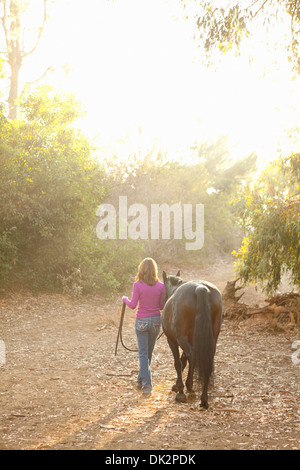 Brunette woman in purple sweater leading brown horse on sunny path at sunset - Stock Photo