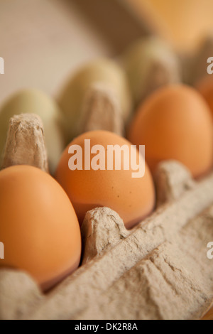 Close up of organic brown eggs in carton - Stock Photo